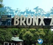 美国布朗克斯动物园